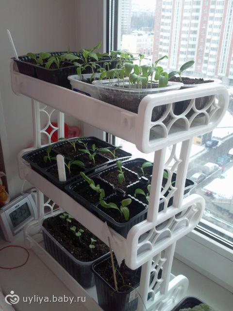 Ящики для огорода на балконе. - наши работы - каталог статей.