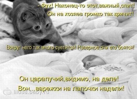 Хи-хик)))))))))