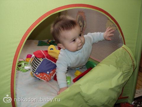 Нам привезли манеж)))